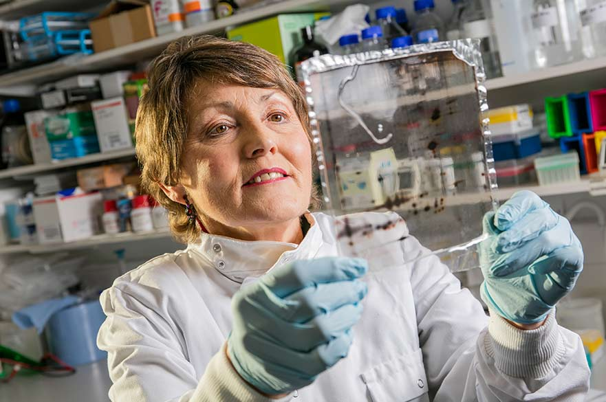 Ellen Billet researcher